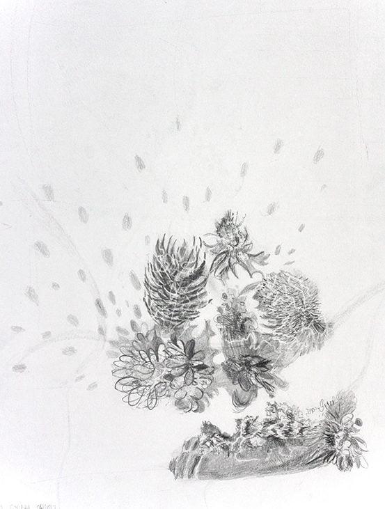 Flowers 50x65cm