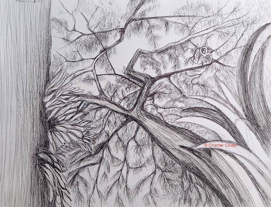 Tropical Forest 3 50x65 cm