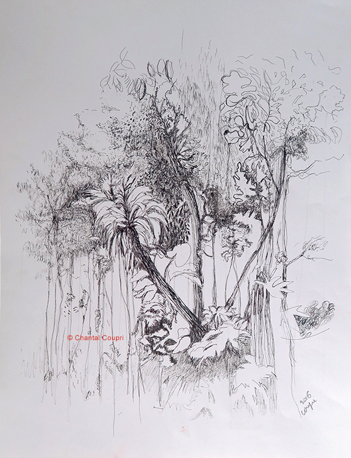 Tropical Forest 2 50x65 cm