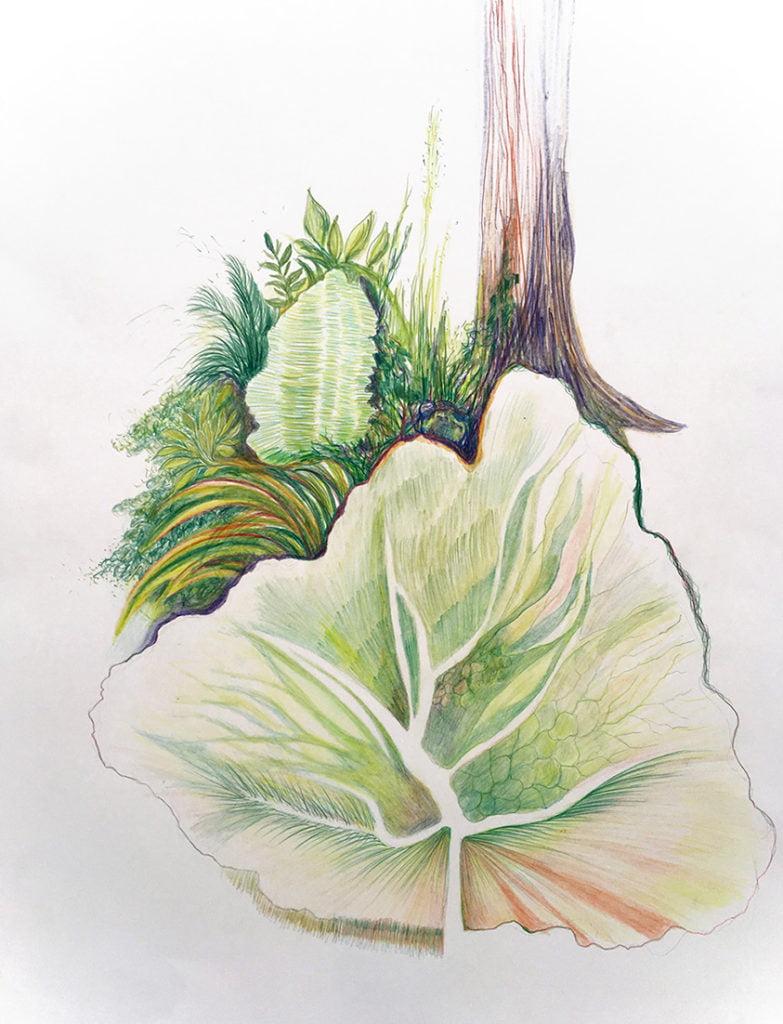 Leaf and wood 50x65cm